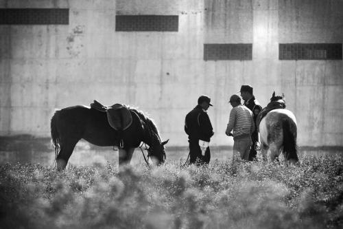 Police check one of the harraga man near Tangier port, Morocco