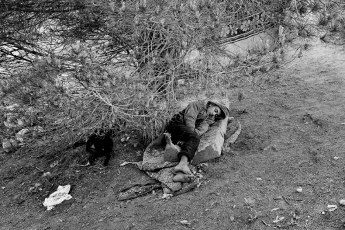 Boy sleeps under the tree in a makeshift camp near Ceuta