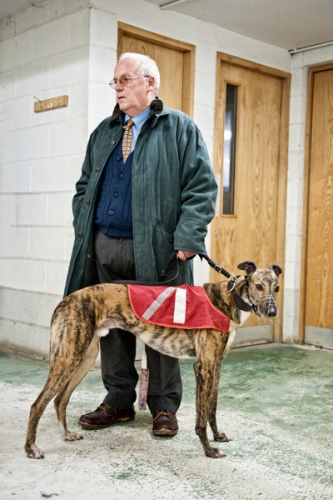 Greyhound with owner