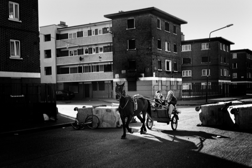 Tenagers ride a sulky, St. Teresas Gardens estate