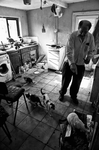 012. Denis feeds the cats at his home