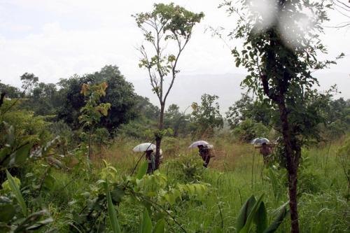 People walks through the jungle, Myanmar
