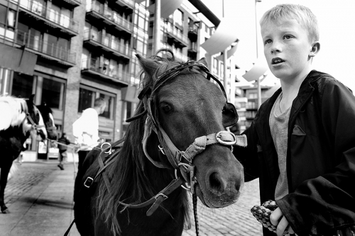 Portrait of a boy with his horse at Smithfield horse fair, Dublin