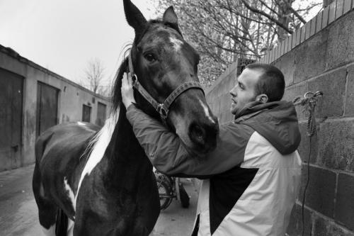 Urban stables, Dublin