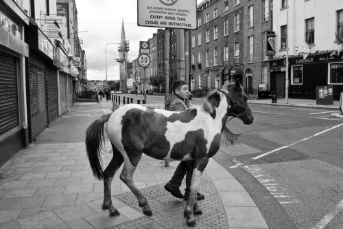 Boy leads a horse at the Dublin city centre