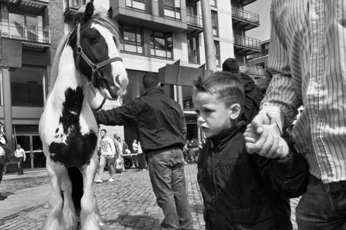 Boy walks at Smithfield horse fair, Dublin