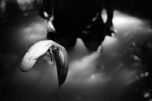 024. Matses boy hold a fish